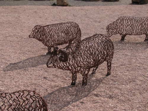 Sheep Sculptures in Clare
