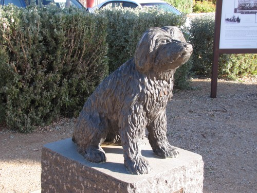Bob the Railway dog in front of the Visitor Centre, Peterborough