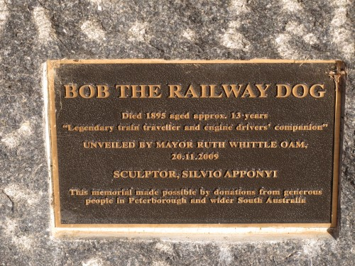 Bob the Railway dog in front of the Visitor Centre, Peterborough, South Australia