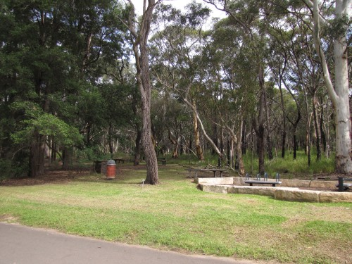 Ku-ring-gai Wildflower Gardens picnic area