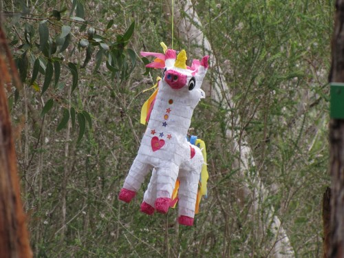 A pinata in the picnic area of the gardens