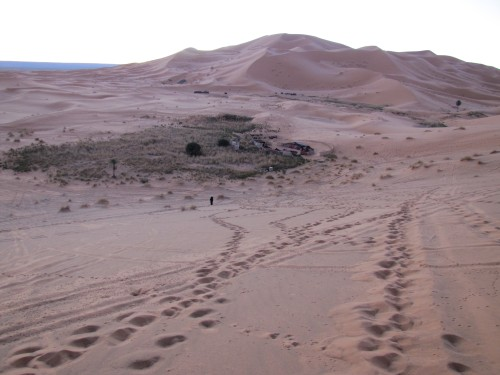 Our campsite in the Sahara