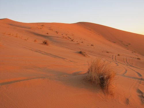 Dawn over the Sahara on Christmas Day