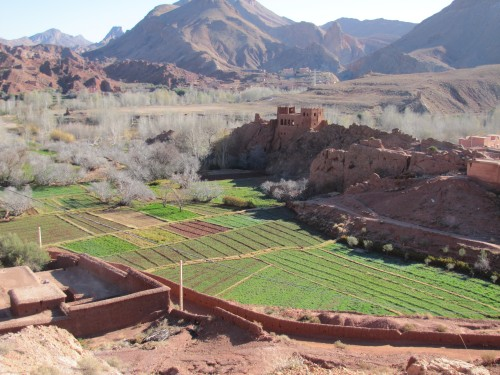 Old building in the Dades Valley set in farming country